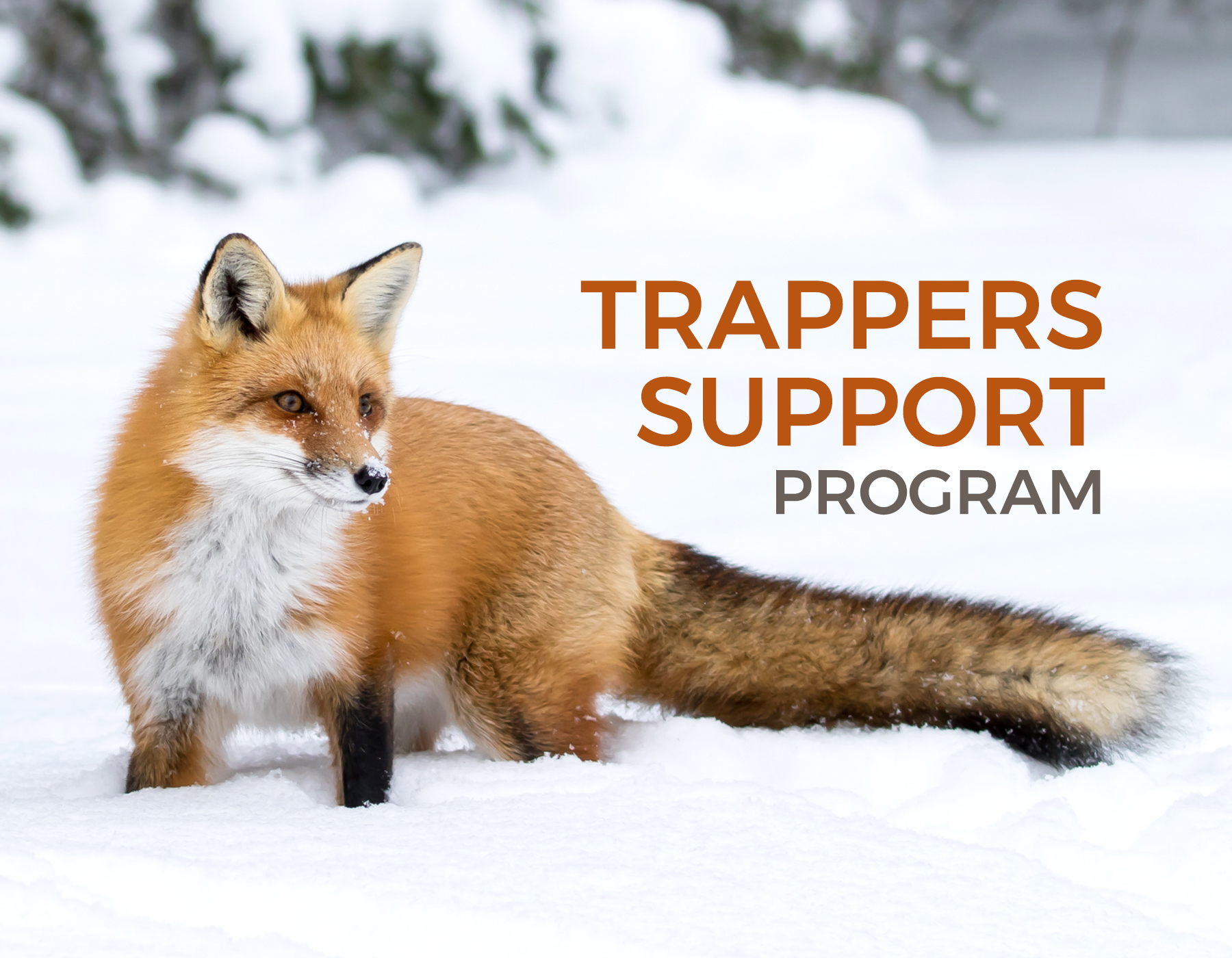 Trappers Support Program